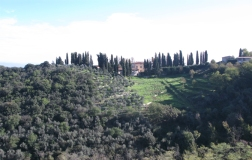 modern_vacation_rentals_lucca_italy_012