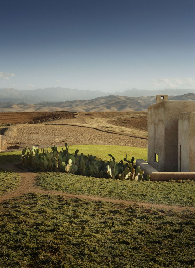 cactii-alongside-villa-k-in-tagadert-mountains-in-morocco