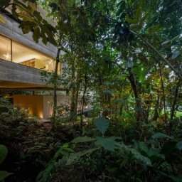 jungle-house-by-marcio-kogan-studio-mk27-and-samanta-cafardo-005