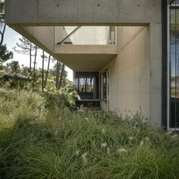 the-wall-house-by-guedes-cruz-arquitectos-image-ricardo-oliveira-alves-011