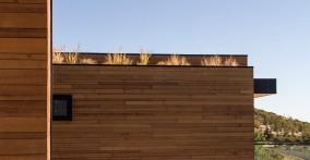 _Sparano+Mooney_Park+City+House_green+roof