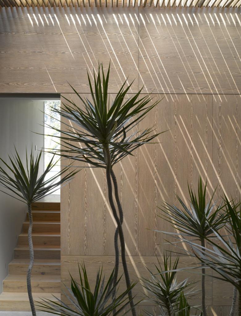 Barrancas house by Ezequiel Farca + Cristina Grappin 16