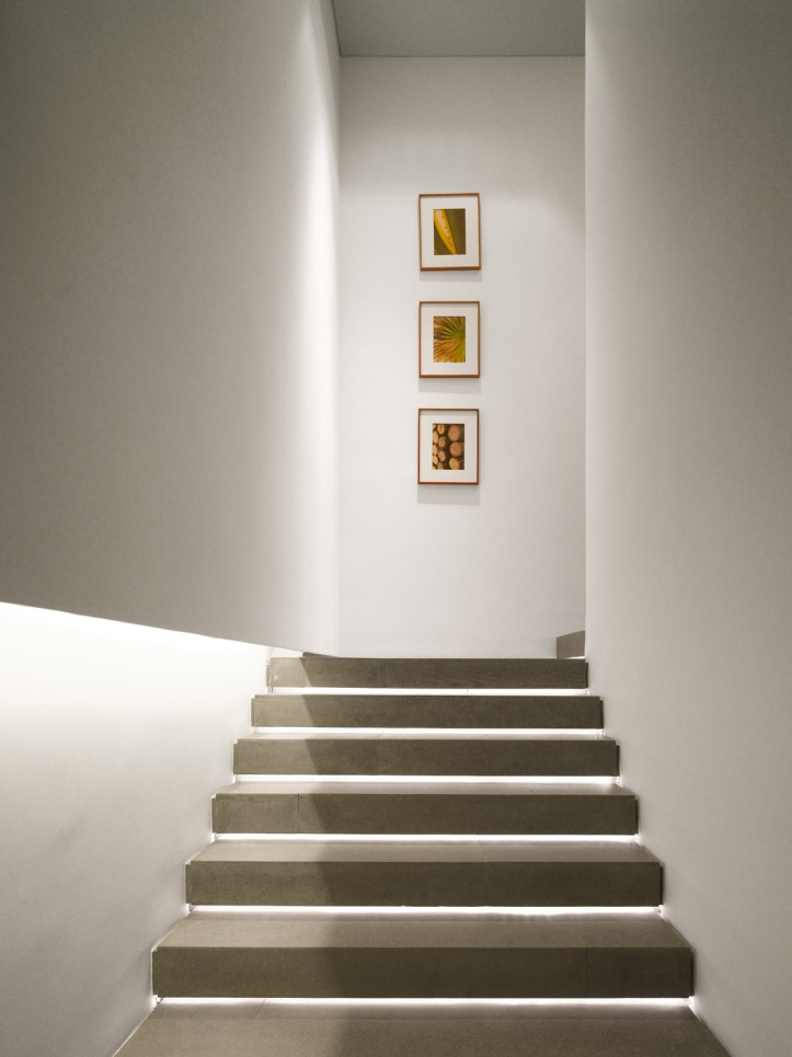 Vallarta House by Ezequiel Farca + Cristina Grappin 18