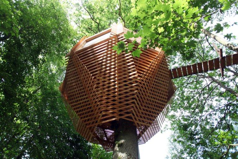 Atelier+LAVIT+-+ORIGIN+trees+house+A20