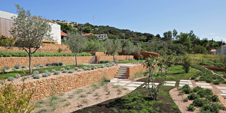 Olive House_mediterian garden by LOG-URBIS 14