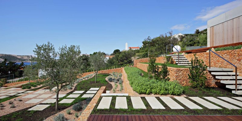 Olive House_mediterian garden by LOG-URBIS 15