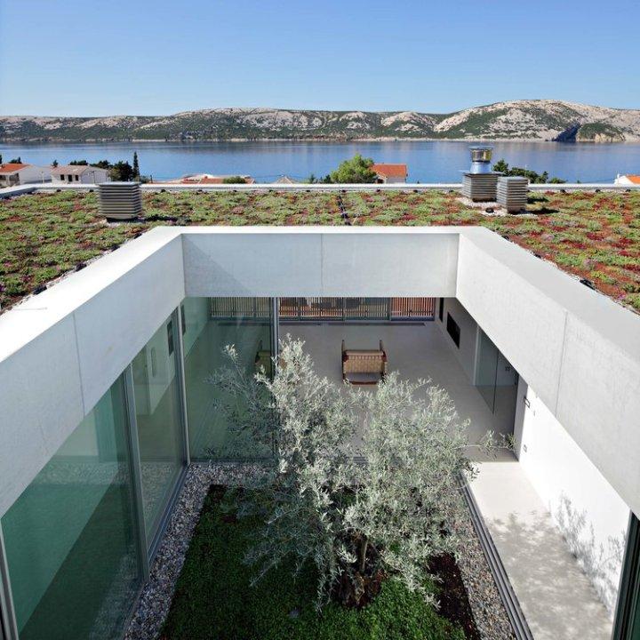 Olive House_mediterian garden by LOG-URBIS 22