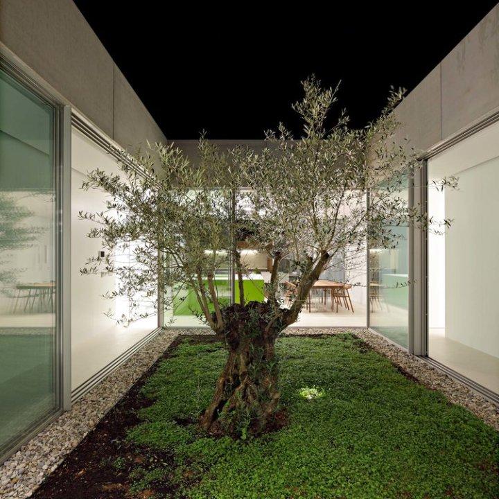 Olive House_mediterian garden by LOG-URBIS 31