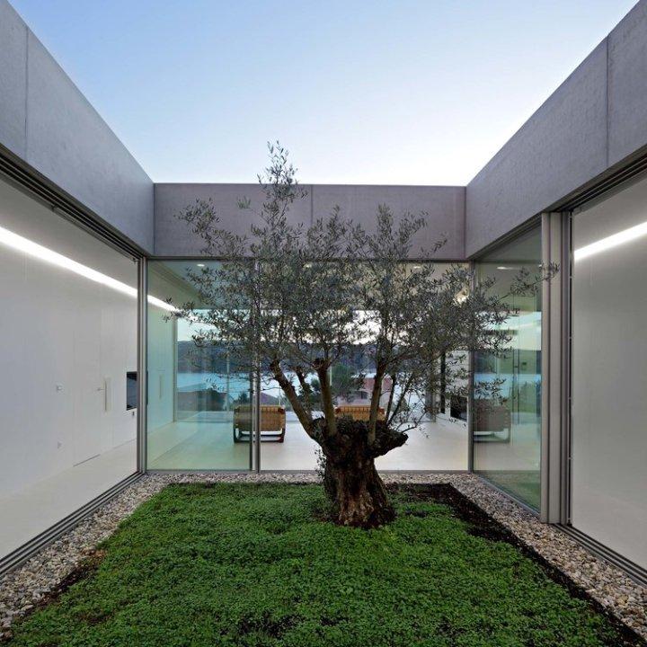 Olive House_mediterian garden by LOG-URBIS 32