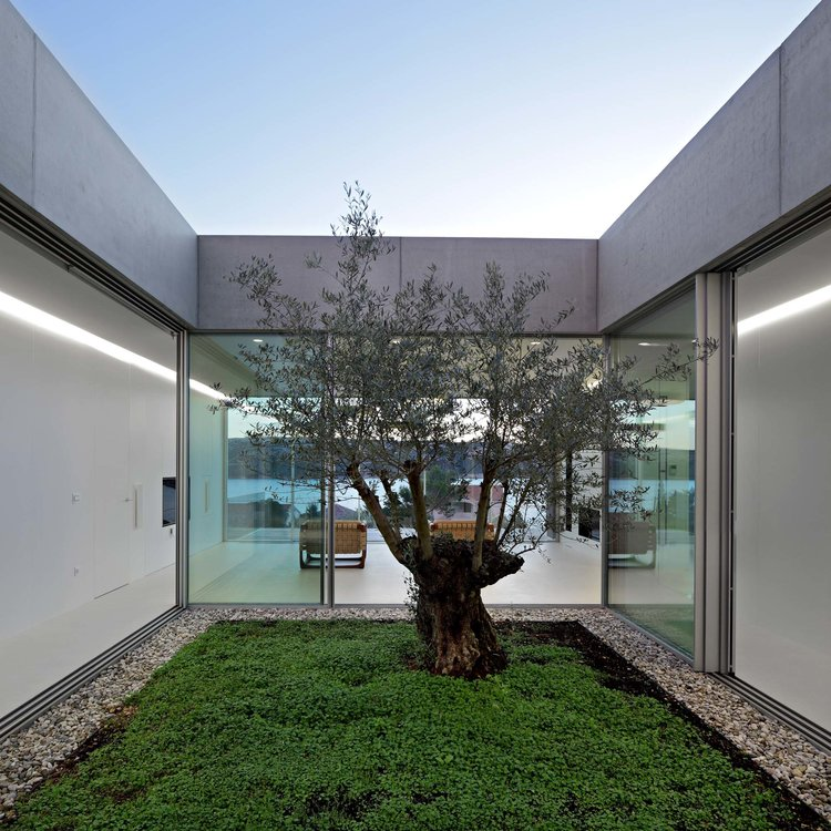Olive House_mediterian garden by LOG-URBIS 32