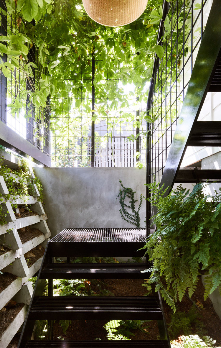 Terrarium House by John Ellway Architect 15