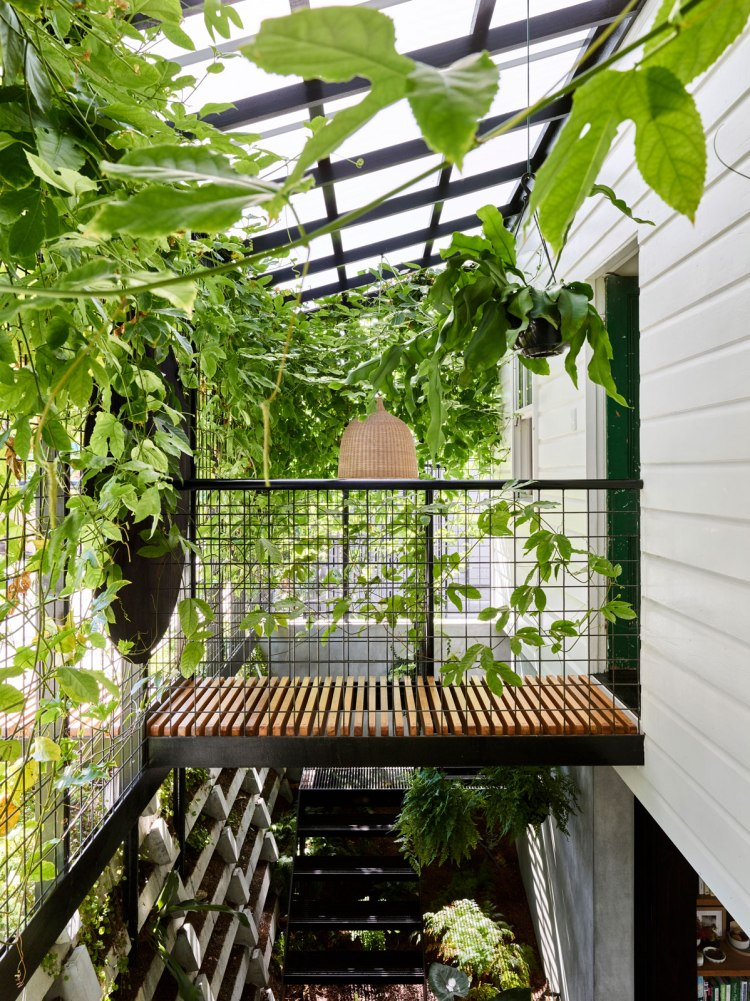 Terrarium House by John Ellway Architect 16