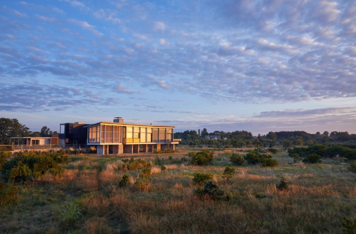 Orient House V by Ryall Sheridan Architects 02