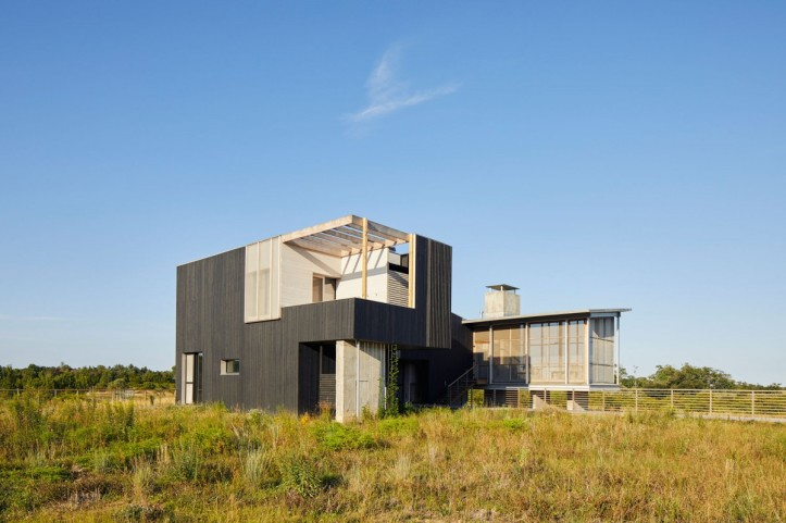 Orient House V by Ryall Sheridan Architects 14