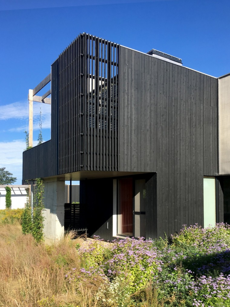 Orient House V by Ryall Sheridan Architects 15