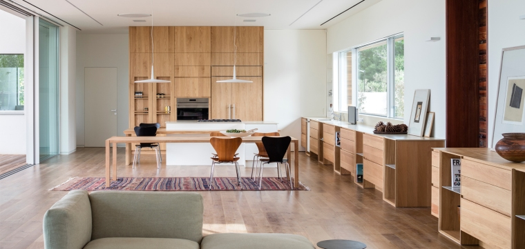 Z House by Ronnie Alroy Architects 19