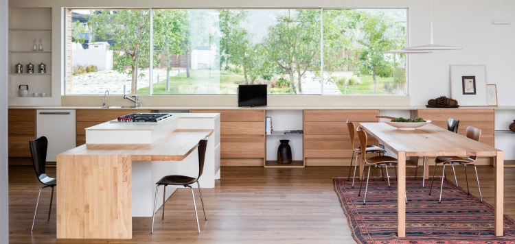 Z House by Ronnie Alroy Architects 21