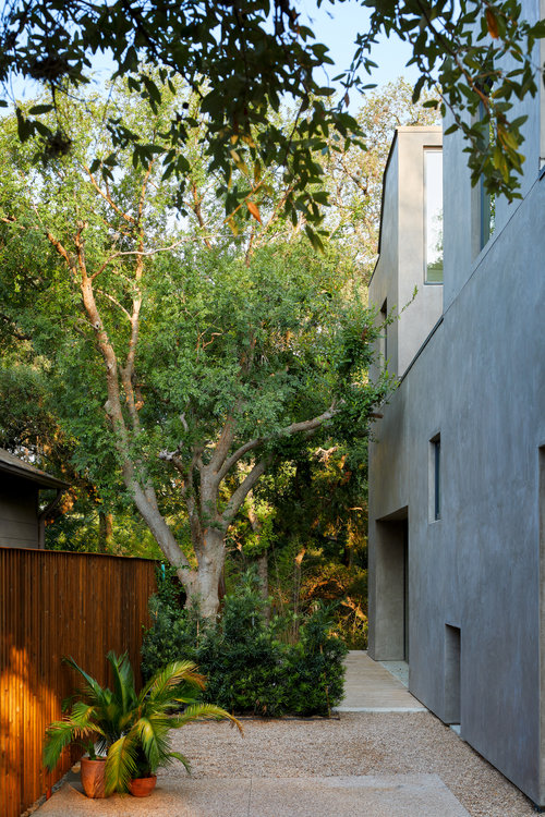 David Street House by Murray Legge Architecture 16
