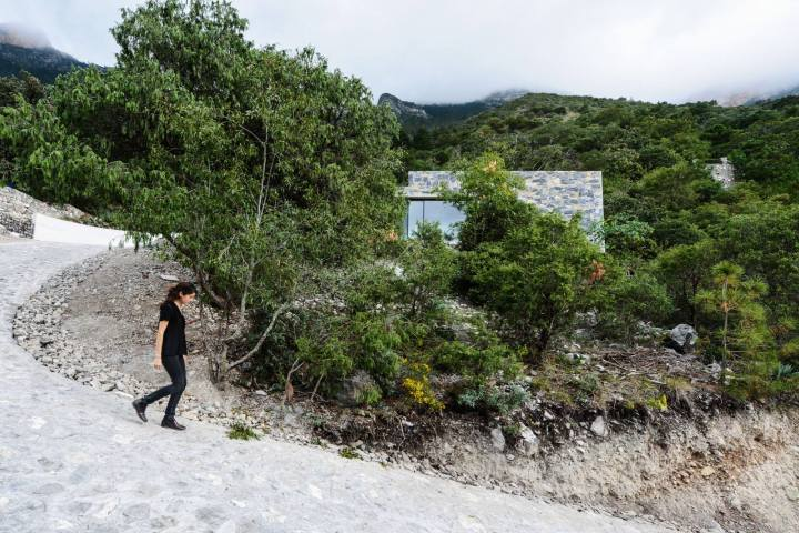casa bedolla by p+0 arquitectura 20